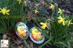 DREHLEITER.info wünscht frohe Ostern